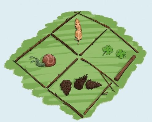 Illustration af en snegl, fjer, kløverblomster og grankogler.